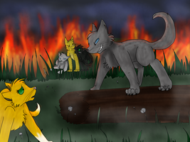 Ashfur's Revenge by beffums
