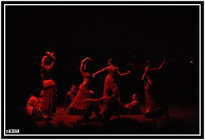 Oriental Flamenco 8 by M-Zedan