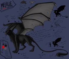 Melville - Ref Sheet by shayfifearts