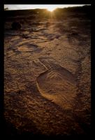 Tired footprints. by feudal89