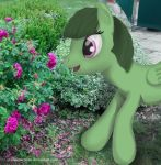 IRL Pony attempt #1: Verdure by Infrasonicman