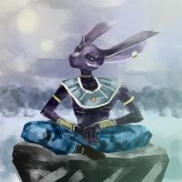 Beerus by jedera01