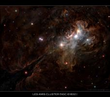 Les Amis Cluster NGC 61832 by DarthFar