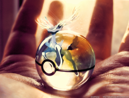 Pokeball of Xerneas