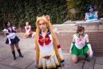 Sailor Scouts by dangerousladies