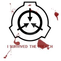 I SURVIVED THE BREACH by ZoeMariePaige