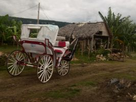 Cuba . White carriage by utico