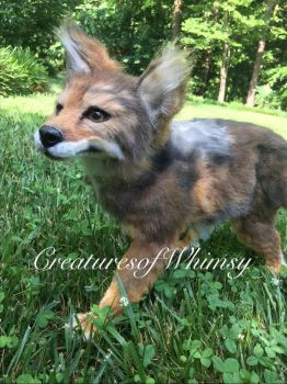 Coyote poseableartdoll is on etsy! by creaturesofwhimsy