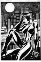 Catwoman by wgpencil
