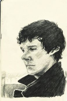 Ben Cumberbatch has lovely hair. by Maddiwhoskis