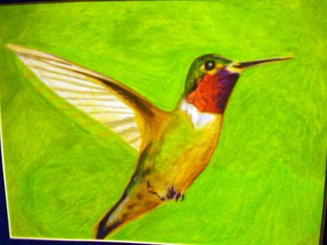 Hummingbird by batmangirl2005