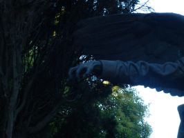 Fear The Weeping Angels! II by SonnEngel
