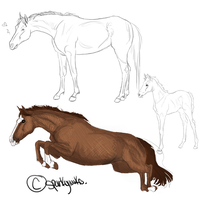 Horse study - Sketch dump thing by RoyalHunterStables
