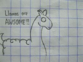 Llamas are AWSOME by husna8