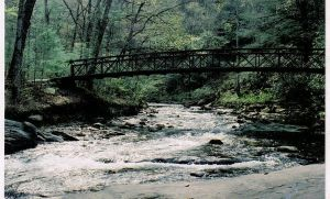 fire's creek bridge, nc by miblover334