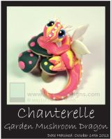 Chanterelle 1 by lizzarddesigns