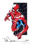 Spider-Man Typhoon Haiyan relief auction by ToddNauck