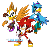 Team Birdy by DrakorDragon