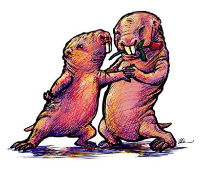 Naked Mole Rat Tango by ursulav