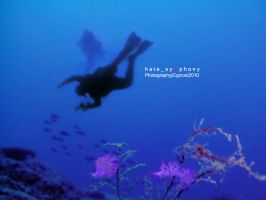 SeaSlugs+Diver_2 by hatesymphony