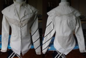 AC Brotherhood: Ezio's doublet/vest and tunic WIP by kisusie