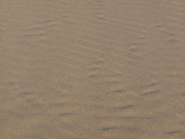 Sand sand 2 by FiLH