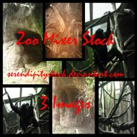 Zoo Stock Pack 5 by SerendipityStock