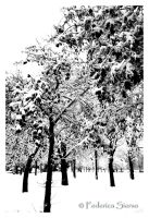 Snow in Rome - Nature is power by skeggia80