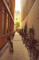 Copenhagen - narrow alleyway by tipoe