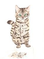 Tabby Watercolor by unistar2000