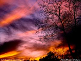 ...skyCOLORS... by fadedbluejeans