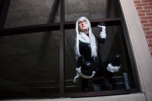 Black Cat Cosplay: Leaning towards Danger by firecloak