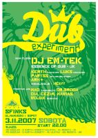Dub Experiment by simcDT