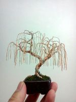 Weeping Willow Wire Bonsai Tree by Ken To by KenToArt
