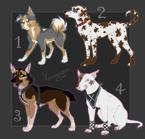 Dog Adoptables CLOSE by Kocurzyca