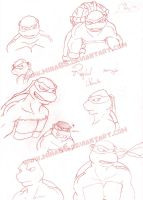 Raphael Sketch Movie Style by Miha85