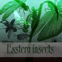 insect brushes by esstera