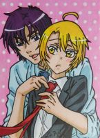 Izumi and Ryoma ACEO card by LadyNin-Chan