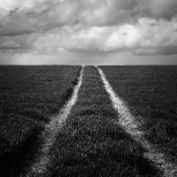 091 - The last way by ThierryV