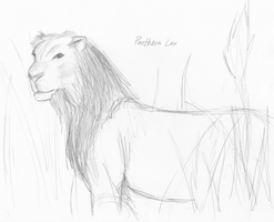 Panthera Leo by gr8brittyn-star