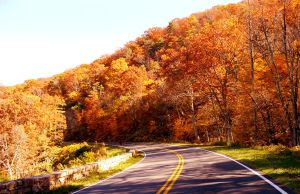Fall Colors of Skyline Drive by Belote-Art