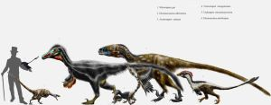Dromaeosaur parade by Durbed