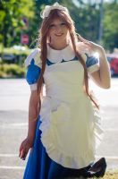 Alice: On the Way Home by darkagesun