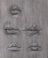 lips studies by dierat