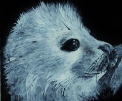 Harp seal pup by YvyB13