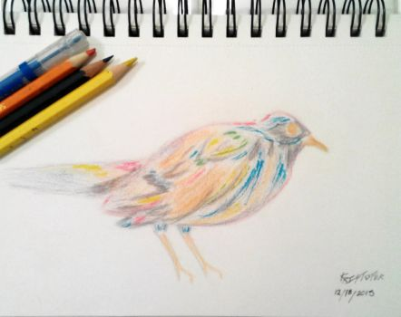 Colorful Joy bird by StormChaser94