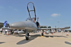 Czech L-159 by in-my-viewfinder