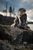 Teva -- Wolf Pelt Taxidermy Headdress by NaturePunk