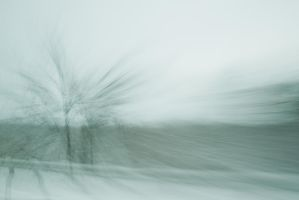 Ice Storm 5 by bovey-photo