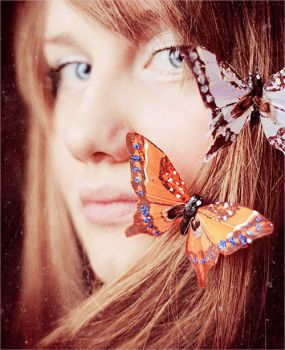 Butterfly by StacyD